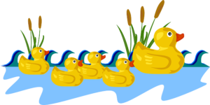 Five little ducks / Cinq petits canards